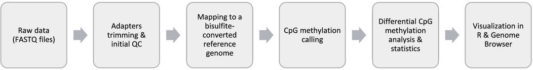 NGS Data Analysis | SciBerg